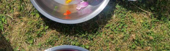 La soupe de fleurs