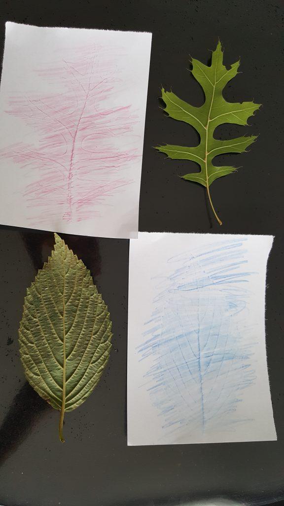 dessins en reliefs feuilles d'automne